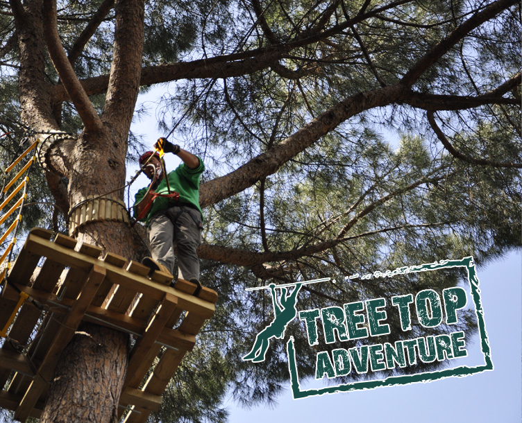 Parete Scalata Roma : Eurpark energy & adventure il parco degli sport outdoor di roma